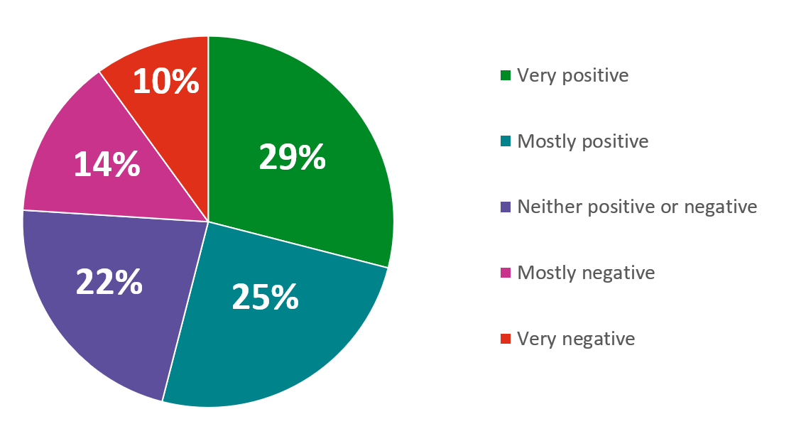 29% very positive, 25% mostly positive, 22% neither positive or negative, 14% mostly negative, 10% very negative