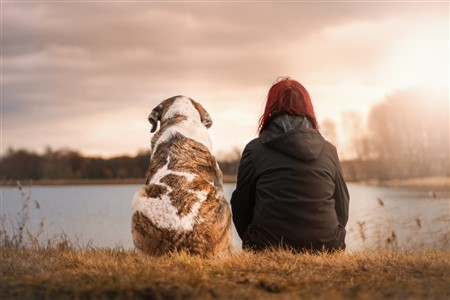 A photo of a dog and a woman