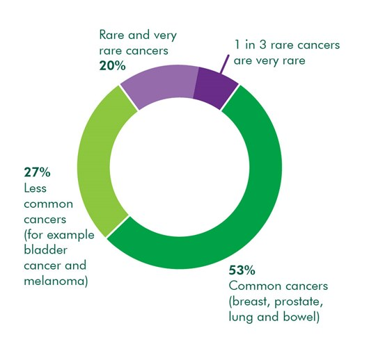 This is a pie chart. It shows that 20% of cancers are rare and very rare. 53% of all cancers are called common cancers, such as breast, prostate, lung and bowel. 27% of cancers are called 'less common cancers' which includes cancers like bladder and melanoma.