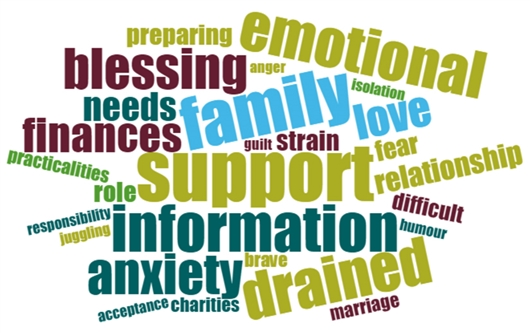 The image shows a lot of words that people used to describe what caring was like. It includes words that were used a lot such as emotion, blessing, family, support, information, anxiety, drained and finances.