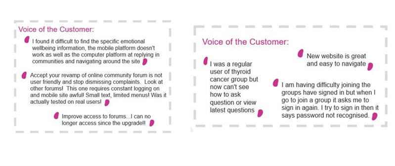 Voice of the customer