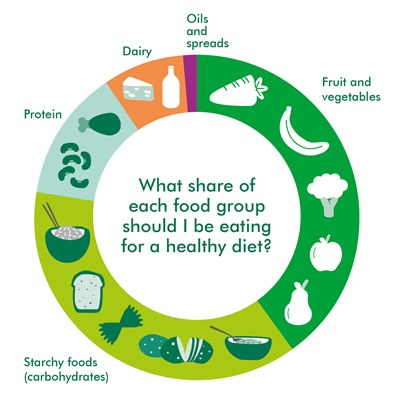 this diagram shows the different amounts of types of food you need to eat to stay healthy.